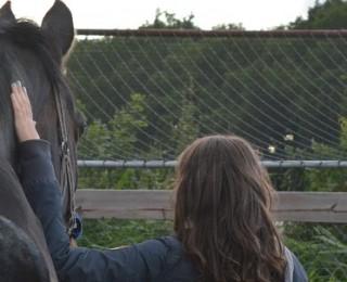 (Nederlands) Kennismaken met Paard & Coaching