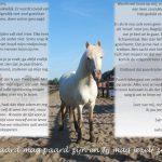 (Nederlands) Het Paard mag paard zijn